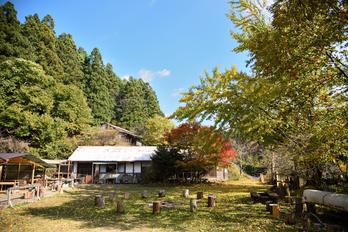 笠置寺,紅葉(DSC_0846,24mm,F4,D750)2014yaotomi.jpg