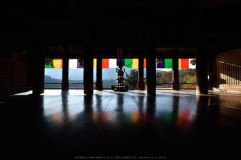 長谷寺,紅葉(DSC_1083,14mm,F9,D750)2014yaotomi.jpg