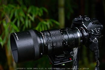 OLYMPUS,M,ED,40_150mm,F2.8,PRO_2014yaotomi_01.jpg