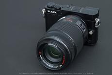 Panasonic,45_175mm,2014yaotomi.jpg