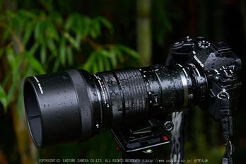 OLYMPUS,M,ED,40_150mm,F2.8,PRO_2014yaotomi_01s.jpg