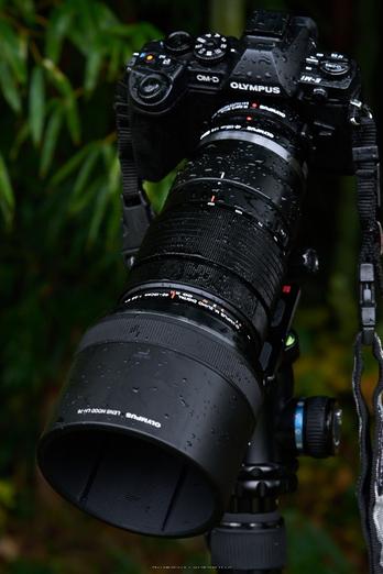 OLYMPUS,M,ED,40_150mm,F2.8,PRO_2014yaotomi_04.jpg