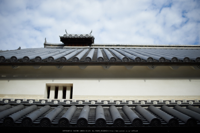 奈良,今井町,冬晴れ(DSC_4910,40 mm,f-2,Df)2015yaotomi_.jpg