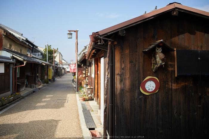 奈良,今井町,冬晴れ(DSC_4925,40 mm,f-2,Df)2015yaotomi_.jpg