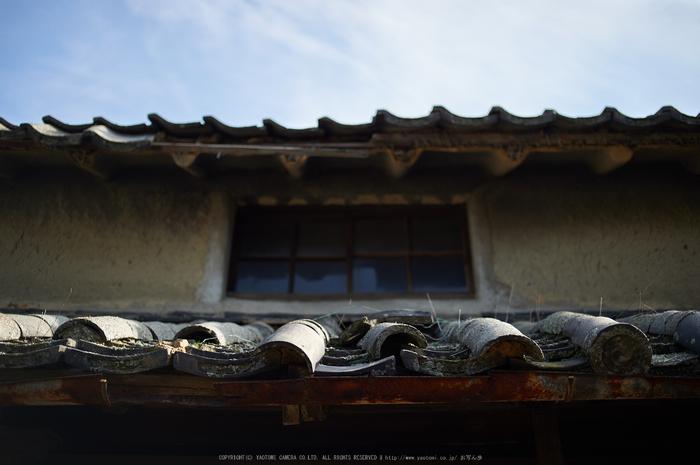 奈良,今井町,冬晴れ(DSC_4948,40 mm,f-2,Df)2015yaotomi_.jpg