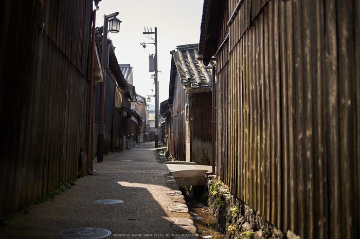 奈良,今井町,冬晴れ(DSC_4954,40 mm,f-2,Df)2015yaotomi_.jpg