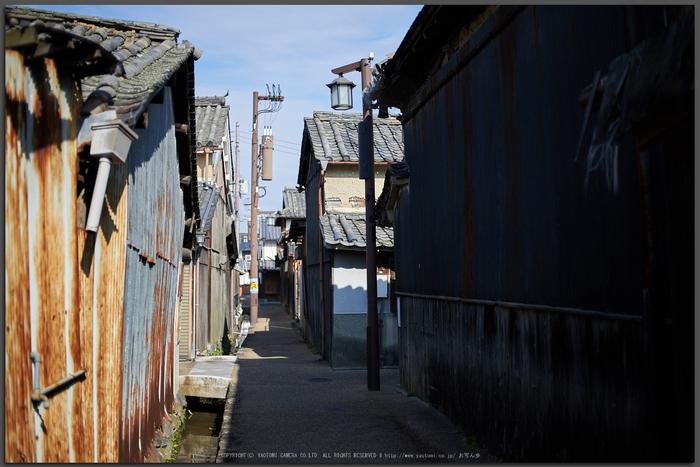 奈良,今井町,冬晴れ(DSC_4964,Top)2015yaotomi_.jpg