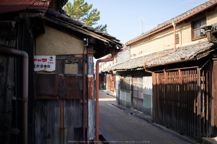 奈良,今井町,冬晴れ(DSC_4971,40 mm,f-2,Df)2015yaotomi_.jpg
