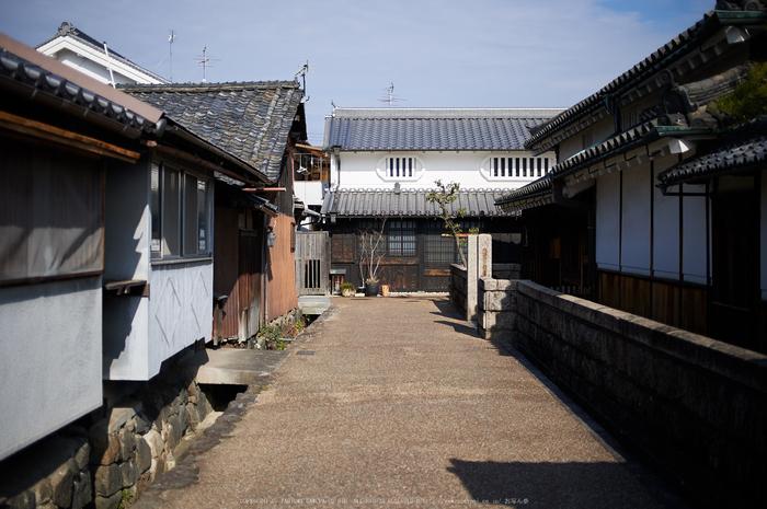 奈良,今井町,冬晴れ(DSC_4978,40 mm,f-2,Df)2015yaotomi_.jpg