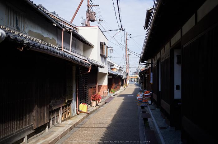 奈良,今井町,冬晴れ(DSC_4982,40 mm,f-2,Df)2015yaotomi_.jpg