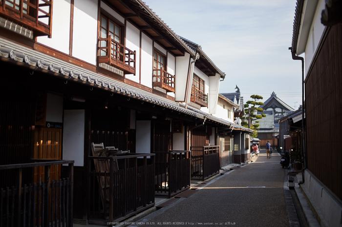 奈良,今井町,冬晴れ(DSC_4997,40 mm,f-2,Df)2015yaotomi_.jpg