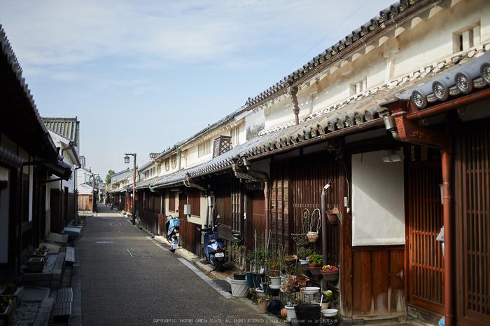 奈良,今井町,冬晴れ(DSC_5001,40 mm,f-2,Df)2015yaotomi_.jpg