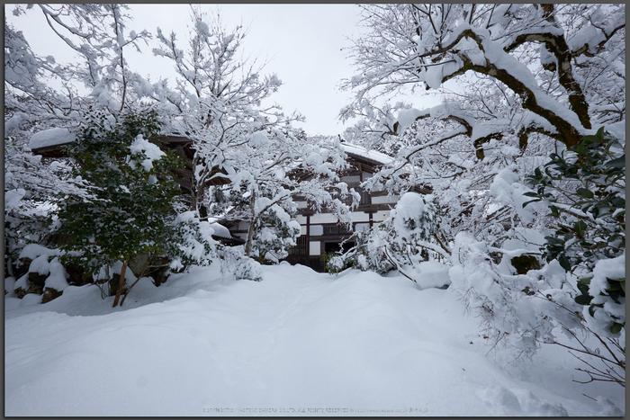 常照皇寺,雪景,初詣(DSCF9909,Top)2014yaotomi_.jpg