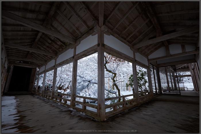 常照皇寺,雪景,初詣(DSCF9937,Top)2014yaotomi_.jpg