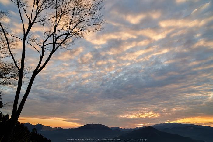 曽爾,屏風岩公苑,冬(DSC_4860,21 mm,f-8,Df)2015yaotomi_.jpg