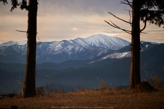 曽爾,屏風岩公苑,冬(DSC_4881,100 mm,f-2,Df)2015yaotomi_.jpg
