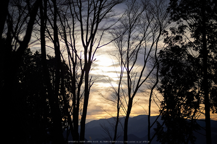 曽爾,屏風岩公苑,冬(DSC_4883,100 mm,f-2,Df)2015yaotomi_.jpg