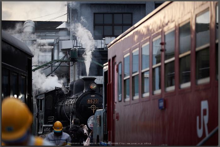 梅小路機関車館,冬(DSCF9143,Top)2015yaotomi_.jpg
