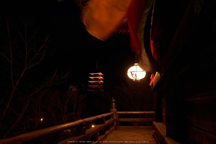 長谷寺,奈良初詣(DSCF9355,f-5.6,18 mm,XT1)2015yaotomi_.jpg