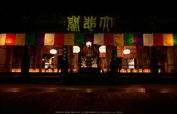 長谷寺,奈良初詣(DSCF9372,f-8,18 mm,XT1)2015yaotomi_.jpg