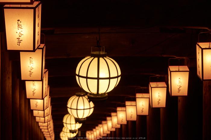長谷寺,奈良初詣(DSCF9435,f-8,99 mm,XT1)2015yaotomi_.jpg