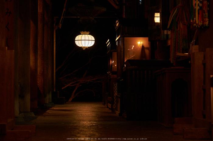 長谷寺,奈良初詣(DSCF9448,f-6.4,79 mm,XT1)2015yaotomi_.jpg