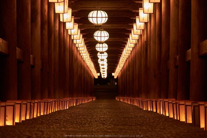 長谷寺,奈良初詣(DSCF9496,f-7.1,104 mm,XT1)2015yaotomi_.jpg