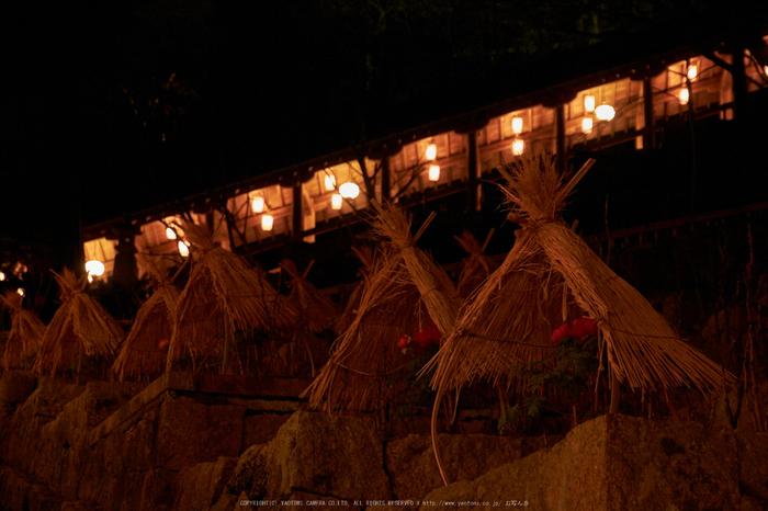 長谷寺,奈良初詣(DSCF9535,f-5.6,52 mm,XT1)2015yaotomi_.jpg