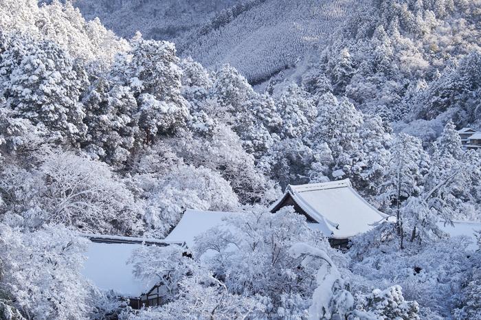 高山寺,雪景,初詣(DSCF9796,f-8,41 mm,XT1)2015yaotomi_.jpg