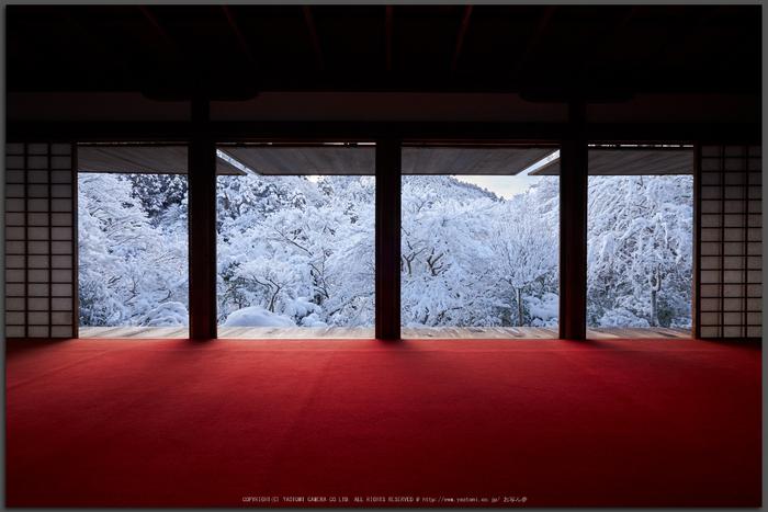 高山寺,雪景,初詣(DSCF9810,Top)2015yaotomi_.jpg