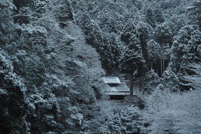 京都,神護寺,雪景(P2140308,47 mm,f-8,EM5II)2015yaotomi_.jpg