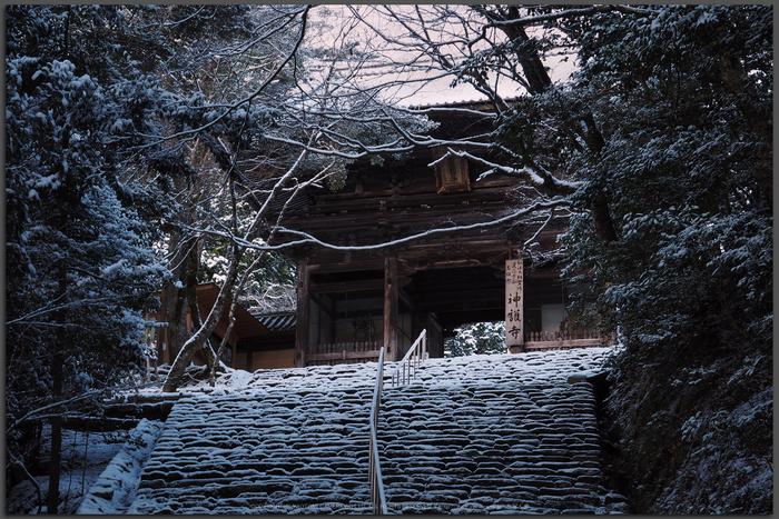 京都,神護寺,雪景(P2140320,EM5II,Top)2015yaotomi_.jpg