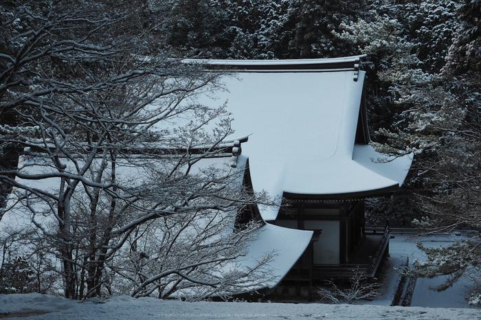 京都,神護寺,雪景(P2140345,47 mm,f-8,EM5II)2015yaotomi_.jpg