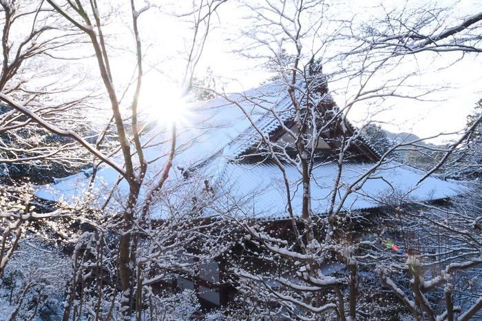 京都,神護寺,雪景(P2140392,14 mm,f-14,EM5II)2015yaotomi_.jpg