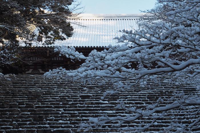 京都,神護寺,雪景(P2140416,42 mm,f-9,EM5II)2015yaotomi_.jpg