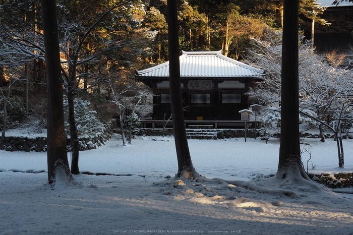 京都,神護寺,雪景(P2140422,25 mm,f-9,EM5II)2015yaotomi_.jpg