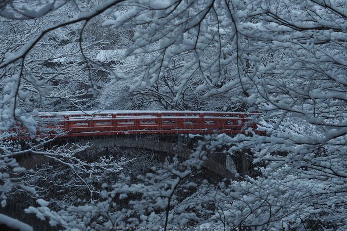 京都,西明寺,雪景(P2140265,47 mm,f-7.1,EM5II)2015yaotomi_.jpg