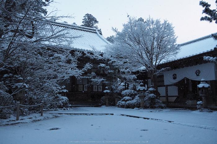 京都,西明寺,雪景(P2140286,14 mm,f-5.6,EM5II)2015yaotomi_.jpg