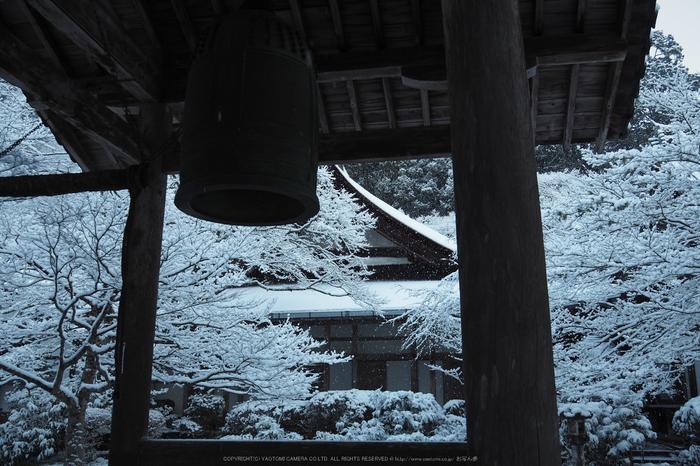 京都,西明寺,雪景(P2140288,16 mm,f-5.6,EM5II)2015yaotomi_.jpg