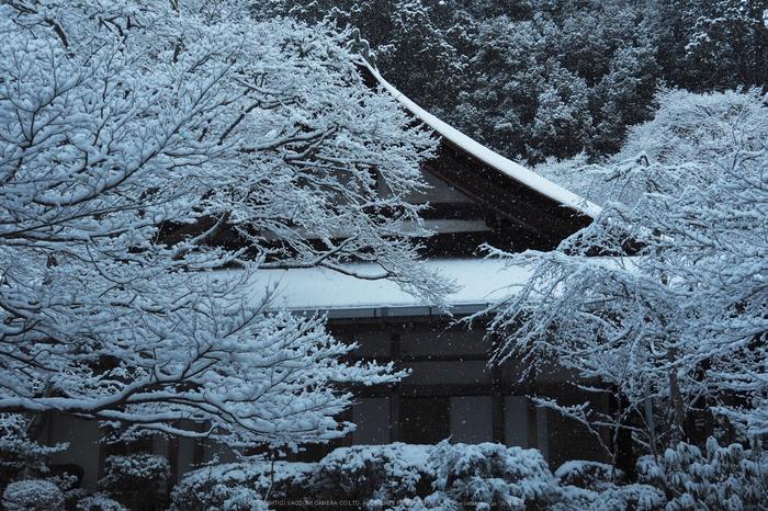京都,西明寺,雪景(P2140290,22 mm,f-5.6,EM5II)2015yaotomi_.jpg