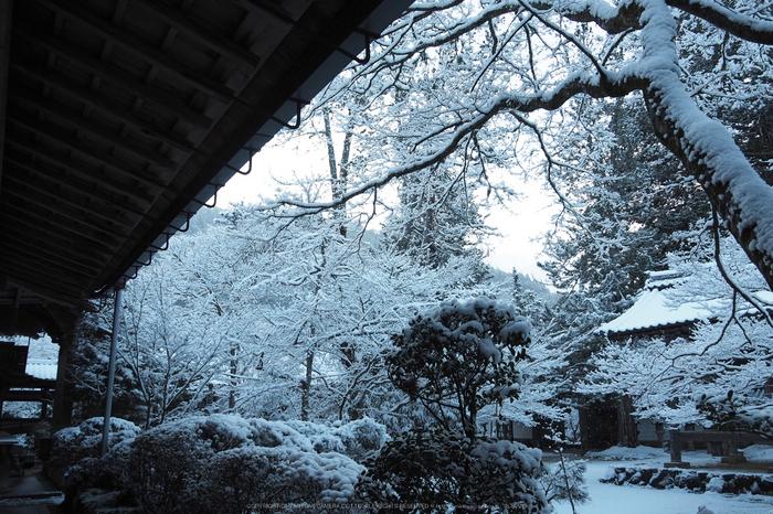 京都,西明寺,雪景(P2140293,14 mm,f-5.6,EM5II)2015yaotomi_.jpg