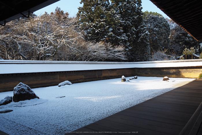 京都,龍安寺,雪景(P2140457,14 mm,f-8,EM5II)2015yaotomi_.jpg