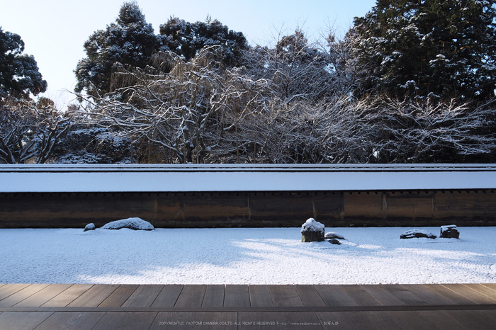 京都,龍安寺,雪景(P2140473,14 mm,f-8,EM5II)2015yaotomi_.jpg