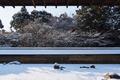 京都,龍安寺,雪景(P2140496,14 mm,f-8,FULL)2015yaotomi_.jpg