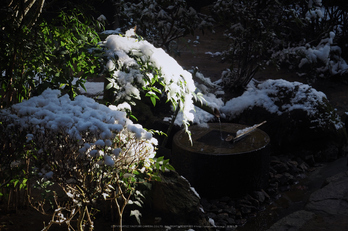 京都,龍安寺,雪景(P2140502,54 mm,f-8,EM5II)2015yaotomi_.jpg