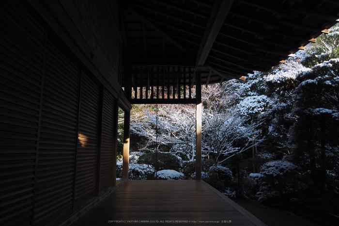 京都,龍安寺,雪景(P2140510,14 mm,f-8,EM5II)2015yaotomi_.jpg