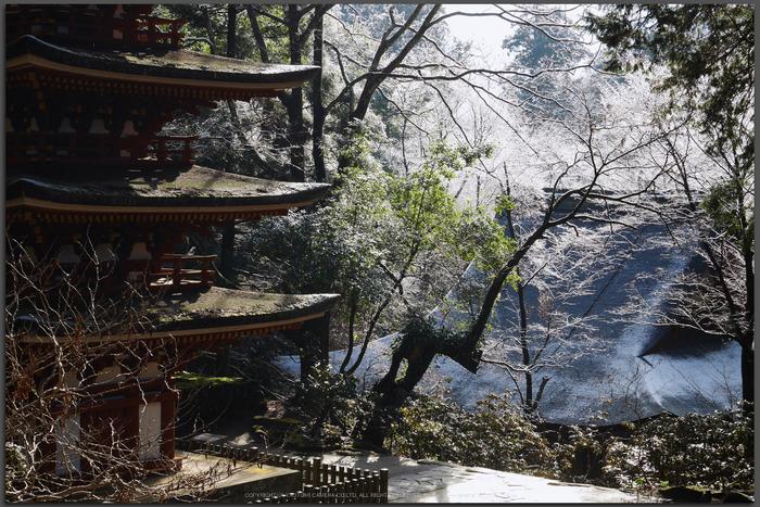 室生寺,雪景(P1000363,GF7,Top)2015yaotomi.jpg