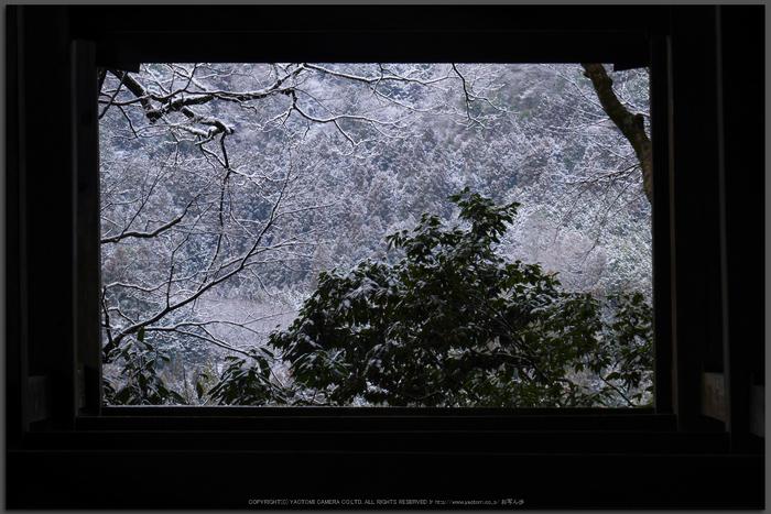室生寺,雪景(P1000479,GF7,Top)2015yaotomi.jpg