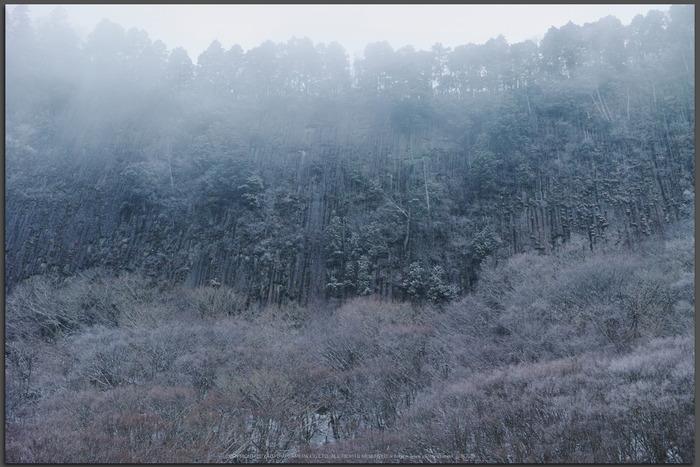 曽爾,屏風岩公苑,雪景(DP3Q0131,Top)2015yaotomi_.jpg