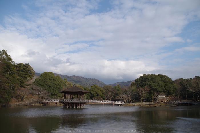 二月堂,修仁会(KS2_0491,18 mm,f-8)2015yaotomi_.jpg